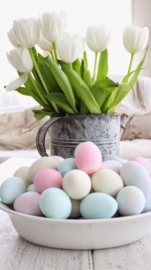 tulips, egga, easter, pastel eggs, white tulips, happy easter